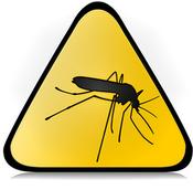 leishmaniose-moustique